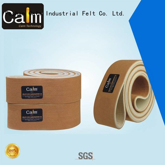 OEM industrial conveyor manufacturers 480°c belt temperature felt belt